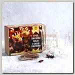 Подарочный набор 'Лучше глинтвейна только 2 бокала глинтвейна' (специи, бокалы 250 мл, 2 шт)