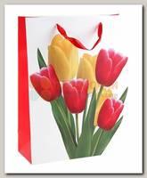 Пакет Тюльпаны ML