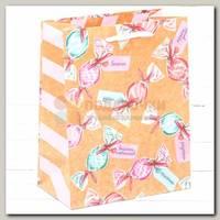 Пакет 'Конфеты Пожелания' S 15 * 12 * 5,5 см