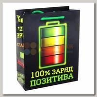 Пакет Батарейка Заряд позитива ms