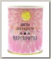 Набор для выращивания 'Цветы для радости' Маргаритки