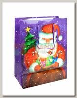 Пакет 'Дед мороз с подарками' MS