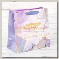 Пакет 'Подарок для кого-то особенного' MS 22 * 22 * 11 см