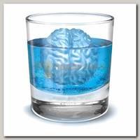 Форма для льда 'Мозг'