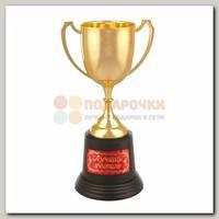 Кубок 'Лучший учитель'