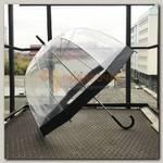 Зонт 'Купол' Черный (прозрачный)
