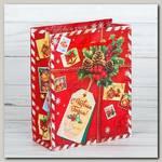 Пакет 'Подарок от Деда Мороза ' ML