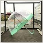 Зонт 'Купол' Зеленый (прозрачный)