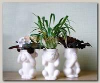 Набор горшочков 'Три мудрые обезьяны'