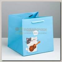 Пакет 'Котик Трунь' S 16 * 16 * 16 см